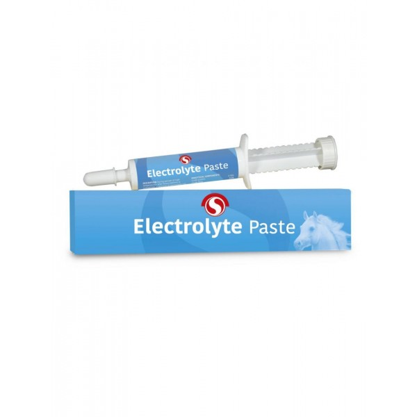 Sectolin electrolyte paste Ruitersport Veendam
