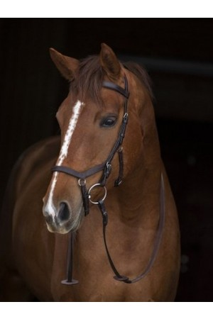 rambo micklem competition bridle ruitersport veendam
